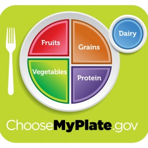Choose My Plate, The New 2010 Dietary Guidelines Food Icon