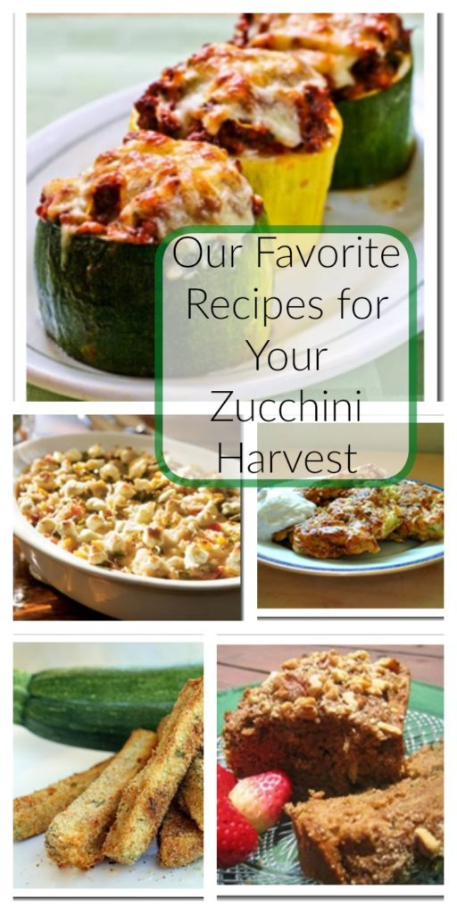 Our Favorite Recipes for Your Zucchini Harvest