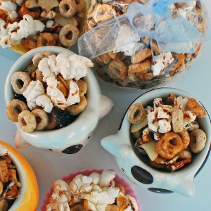 Simple Sweet Snack Mix For Kids