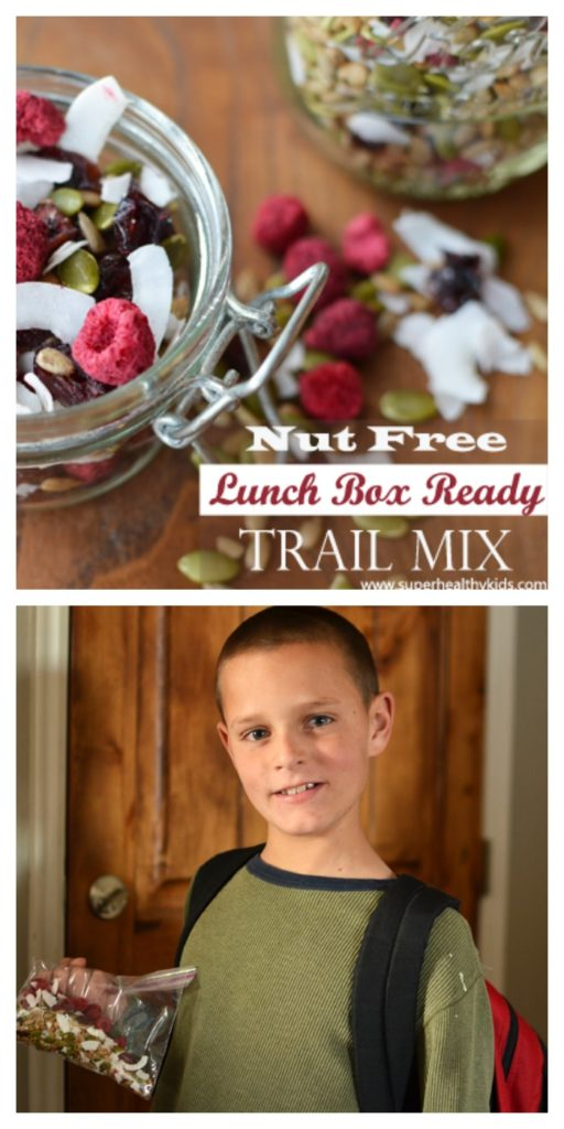 nut free lunch box ready trail mix