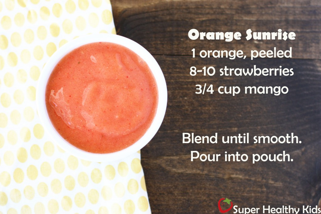 5 Super Healthy Baby Food Recipes for Squeeze Pouches. 5 DIY baby food recipe your little one will love!
