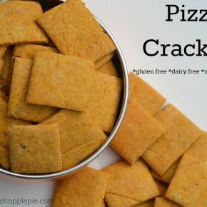 Gluten Free Pizza Crackers