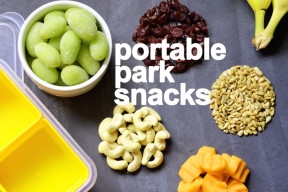 Portable Park Snacks