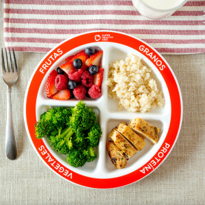 MyPlate and the Update on Grains