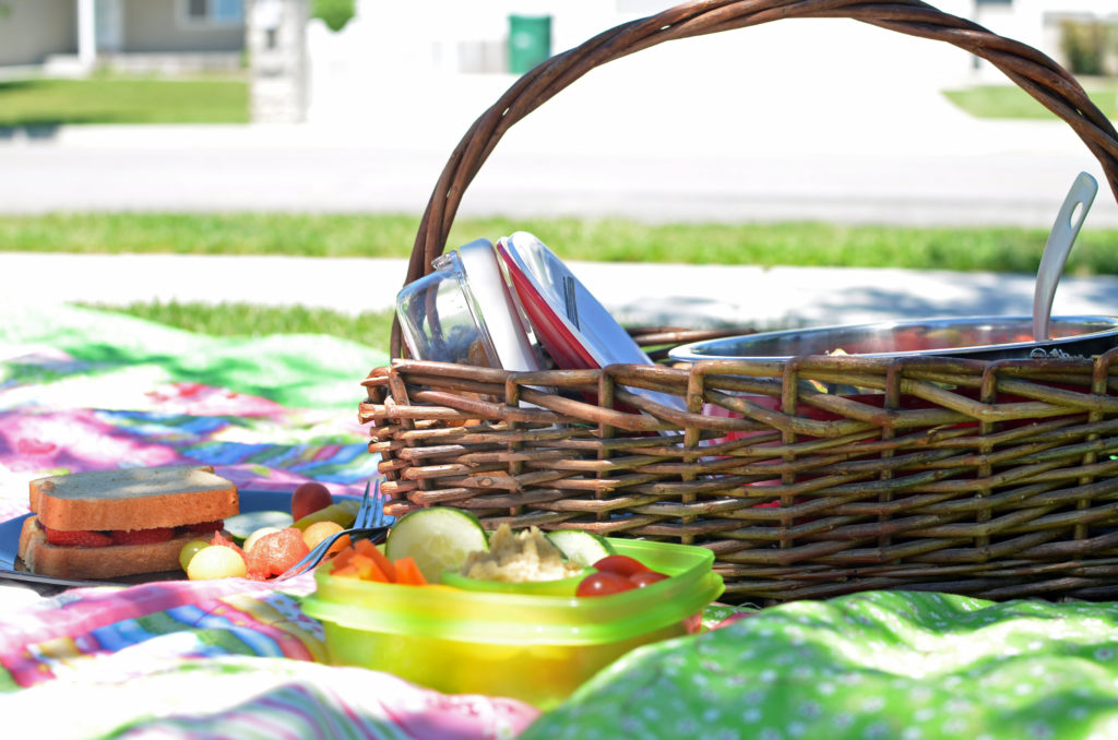 fresh-picnic-lunch
