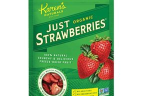 Karen's Naturals Just Tomatoes, Organic Just Strawberries 1.2 Ounce Pouch