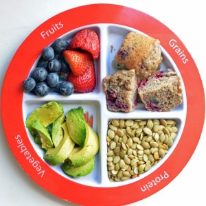 MyPlate for the Picky Eater