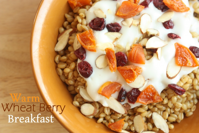 Warm Wheat Berry Breakfast | Healthy Ideas for Kids
