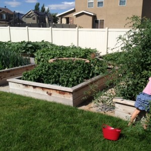 Top 10 Reasons Growing a Garden Helps your Family Be Healthier