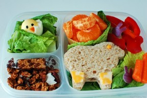 The Dietary Guidelines for a Balanced Lunch {with the help of our favorite lunch boxes}