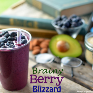 Berry Brainy Blizzard Recipe – A Smoothie For Kids
