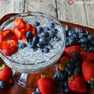 Chia Seed Champion Pudding Recipe {Healthy Dessert for Kids}
