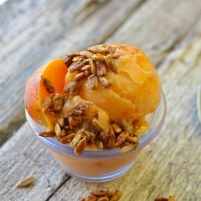Honey Roasted Cinnamon Sunflower Seeds with Peach Sorbet