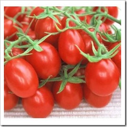 Lycopene: Antioxidant Kids Need!
