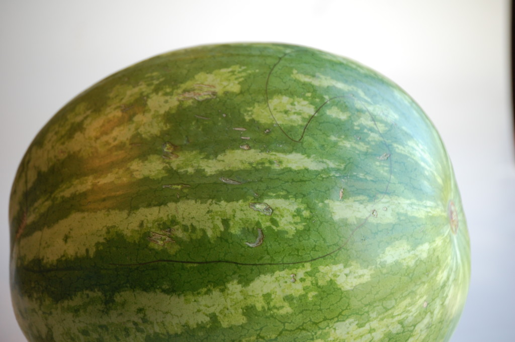 Super simple and easy steps to make this watermelon whale.