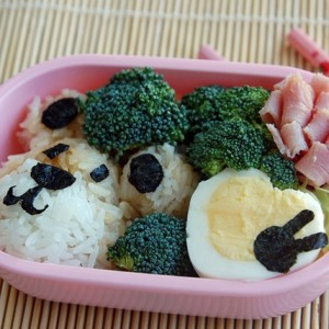 Japanese Lunch, The Healthy Way