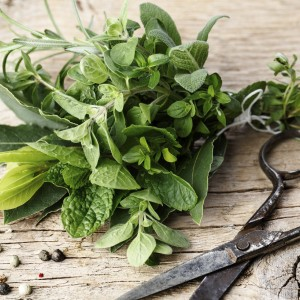 The Herbs That Improve Your Cooking And Your Health