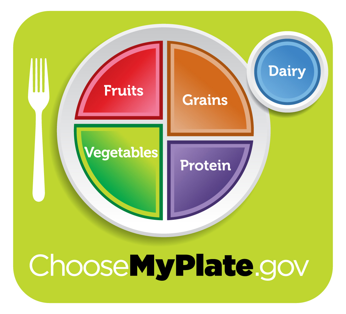 Choose My Plate The New 2010 Dietary Guidelines Food Icon