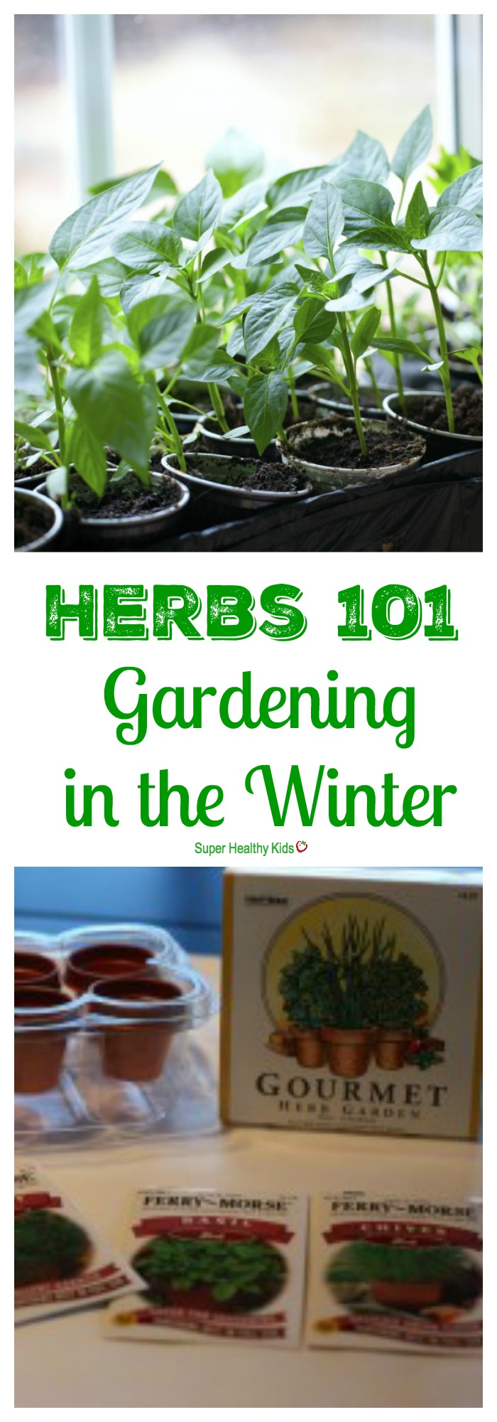GARDENING - Gardening in the Winter - Herbs 101. Put your green thumb to good use during the winter months! http://www.superhealthykids.com/gardening-in-the-winter-herbs-101/