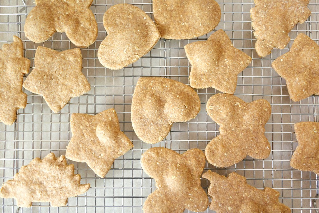 Homemade Peanut Butter Crackers. Crunchy snacking, anywhere!