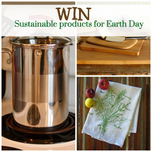 A Sustainable Kitchen Makeover
