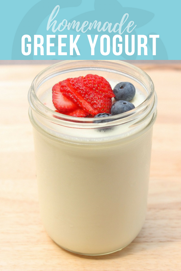 how to make yogurt from milk at home