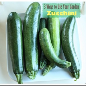 Garden Zucchini: 3 Different Ways to Use it All